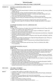 Salesforce Business Analyst Resume Samples Velvet Jobs