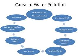 of water pollution essay cause of water pollution essay