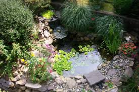Small Picture Small Garden Pond Ideas Uk Best Images About Backyard Small
