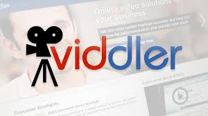 interview video strategies for business viddler forge3