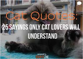 Quotes About Pets And Friendship Adorable Cat Quotes 48 Sayings Only Cat Lovers Will Understand