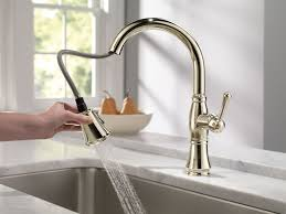 Kitchen astounding Gooseneck Kitchen Faucet With Pull Out Spray