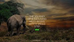 Elephant Quotes Enchanting Search Results QuotesBook