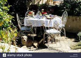 white wrought iron furniture. stock photo table laid in garden for lunch summer white wrought iron furniture dog and flowers r