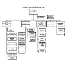 Hr Organizational Chart Sample Sample Human Resources Organizational Chart 9 Documents