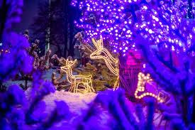 Wieviel Weihnachtsdeko Am Haus Darf Es Denn Sein