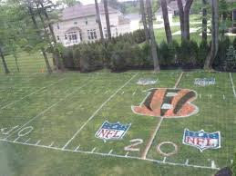 I Would LOVE To Have A Mini Football Field In My Backyard Football Field In Backyard
