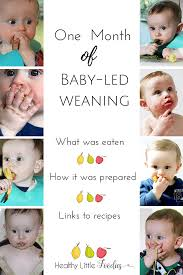 Starting Baby On Solids Chart Baby Led Weaning Blw Food Inspiration For The First Month