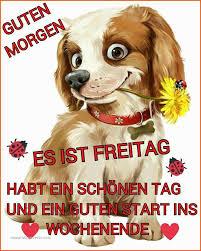 70 Hübsch Images Of Lustige Sprüche Zum Freitag Utconcerts