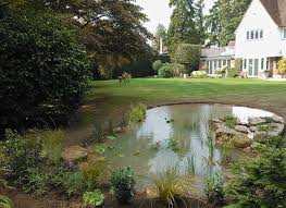 Small Picture The Claudia de Yong Blog Specialists in water garden design and