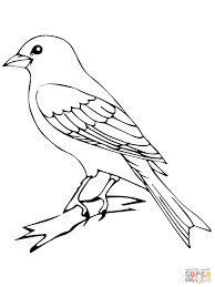 Small Picture Perched Canary Bird coloring page Free Printable Coloring Pages