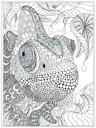 Free Printable Advanced Coloring Pages Advanced Coloring Pages
