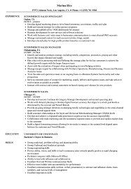 Ecommerce Sales Resume Samples | Velvet Jobs