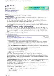Programming Resume Examples Resume Samples