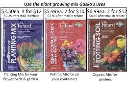 nursery vegtables and herbs ed s the soil gasko uses