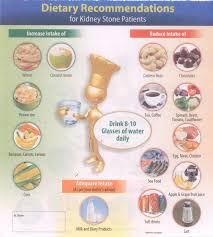 Kidney Stone Diet Chart 5 2020 Printable Calendar