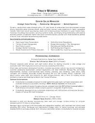 Sample Of Profile In Resume Resume Profile Examples For College ...