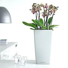 office flower pots. Flower Pots Indoor Planters Office 9 Click To Enlarge Plant Online Large -