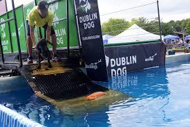 dog ramp for inground pool
