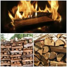 Best Firewood To Burn Chart The Best Firewood Chart To Burn Chop And Store Modern