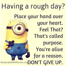 Funny Uplifting Quotes Stunning Funny Uplifting Quotes Feat Today Top Cool Minions Pm March Funny
