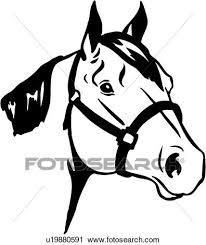 quarter horse head clip art. Modren Horse Animal Breeds Horse Quarter Horse Head U19880591 ValueClips Clip Art   Intended Quarter Horse Head Fotosearch