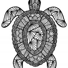 Small Picture Coloring Pages For Adults Turtles Archives Mente Beta Most