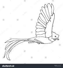 Small Picture Quetzal Bird Stock Vector 492370828 Shutterstock