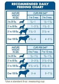 Dog Feeding Chart By Age Goldenacresdogs Com