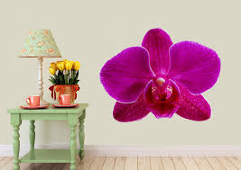 flowers sticker pink orchid beauty wall sticker on orchid vinyl wall art with pink orchid beauty flowers printed wall sticker