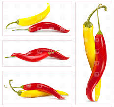 chili pepper vector.  Chili Yellow Red And Hot Chili Peppers Vector Image U2013 Artwork Of Food  Beverages  Click To Zoom And Chili Pepper T