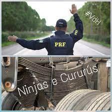 Ninjas e Cururus 3.0 - Publicaciones