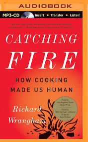catching fire how cooking made us human richard wrangham kevin catching fire how cooking made us human richard wrangham kevin pariseau 0889290368706 com books