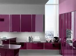 Purple Anemone color in modern kitchen cabinet storage solution