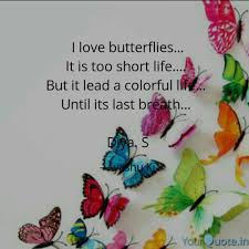 I Love Butterflies It Quotes Writings By Dishira Inspire