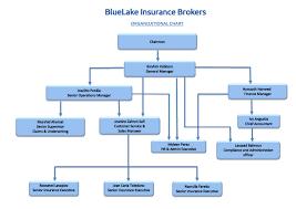 Organization Chart Bluelake Insurance Brokers W L L