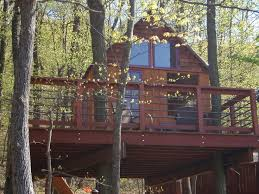 A Dallas Coupleu0027s 75000Pound Treehouse Is Going To Be On TV Treehouse Masters Free Episodes