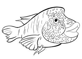 Pesci Da Stampare E Colorare Con Pesce Disegno Per Bambini E Pesce