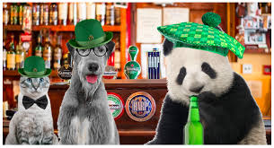 Create Your Own St Patricks Day Ecard Choose A Background Then