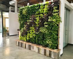 how to build a vertical garden. Beautiful Build Florafelt Vertical Garden For Yoobi Los Angeles By Tucker Warner Design  Build For How To A