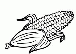 Small Picture The Best corn coloring sheet httpcoloringalifiahbizthe