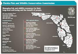 Florida Wildlife Saltwater amp; Conservation Fish Commission rRgYqr1