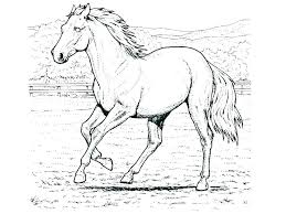 spirit horse coloring pages printable coloring pages of horses to print spirit horse coloring pages horse