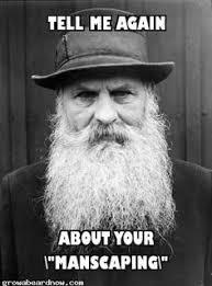 meme on Pinterest | Beards, Beard Humor and Overly Manly Man via Relatably.com