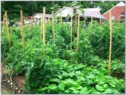 craigslist cky farm and garden farm and garden farm garden by owner autos post for farm