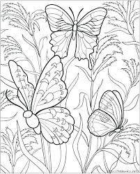 Butterflies And Flowers Coloring Pages Printable Of For Adults As