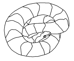Small Picture Snake Coloring Pages For Coloring At Home And School
