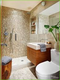 shower chairs for elderly best of walk in shower ideas 5c7