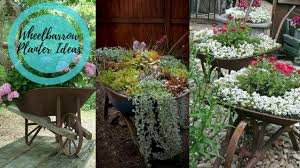 27 Wheelbarrow Flower Planter Ideas for Your Yard -