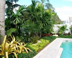 Small Picture Tropical Garden Ideas for Melbourne Furniture MommyEssencecom